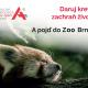 Daruj krev a pojď do Zoo Brno!
