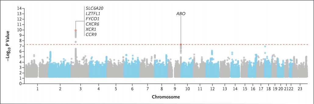 covid-genom